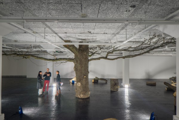 Oak installation. photo: Jean-Baptiste Beranger